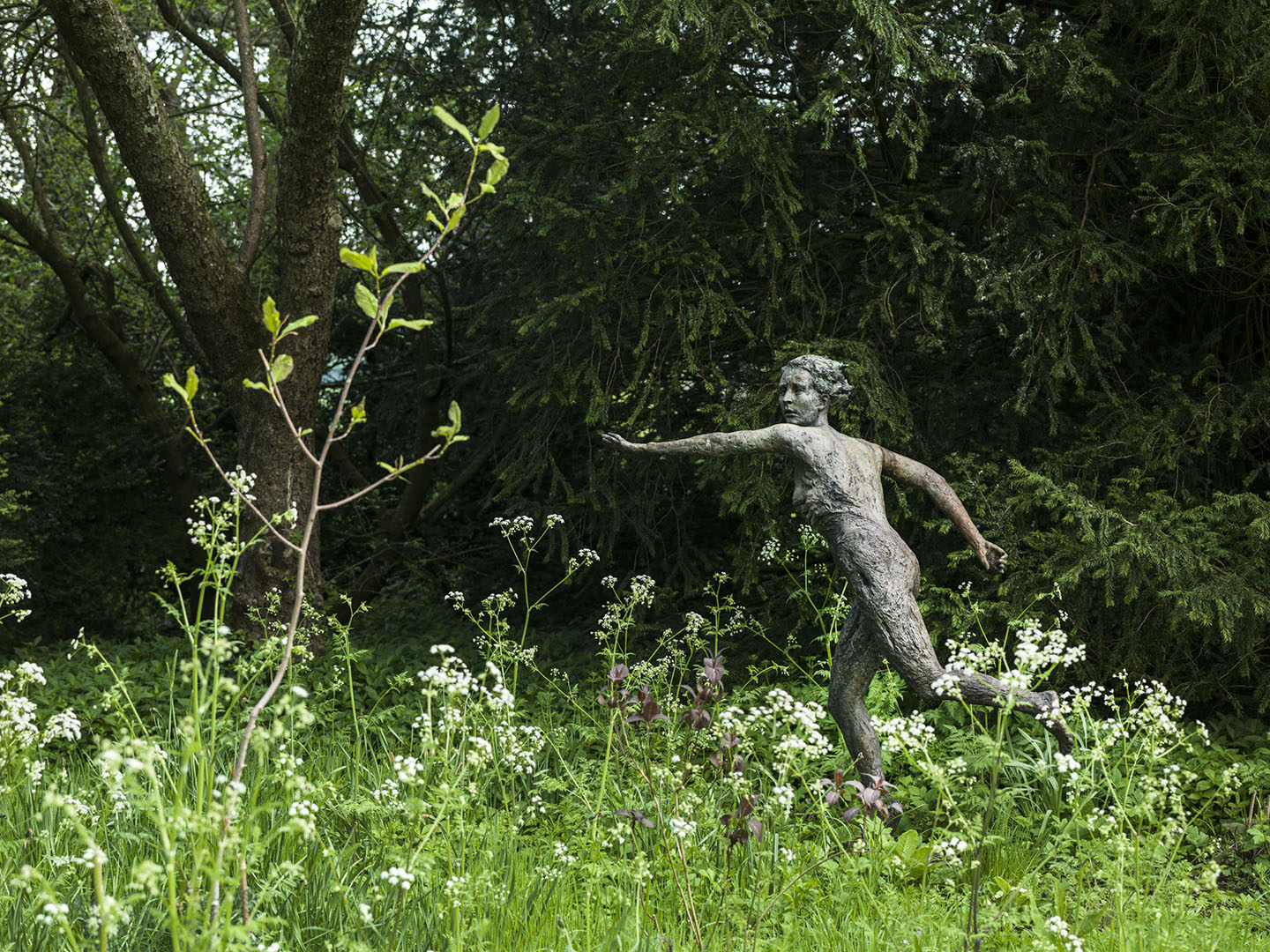 Daphne, Sculpture by Louisa Forbes